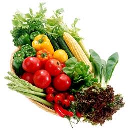 Intezív termesztés = Hatékony tápoldatozás
